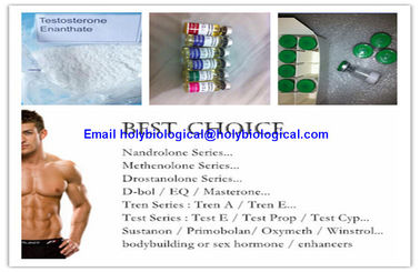 China Gesundes intramuskulöses Hormon-Steroid-Test Enanthate-Testosteron Enanthate fournisseur