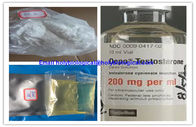 Muskel-Wachstums-Testosteron-Steroid-Hormon Enanthate-Test Enanthate-Pulver